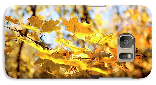 Galaxy Case featuring the photograph Golden Leaves by Ivy Ho