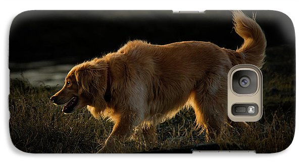 Galaxy Case featuring the photograph Golden by Randy Hall