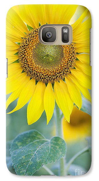Golden Sunflower Galaxy Case by Tim Gainey