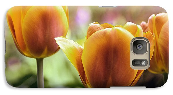 Galaxy Case featuring the photograph Golden Tulips by William Havle