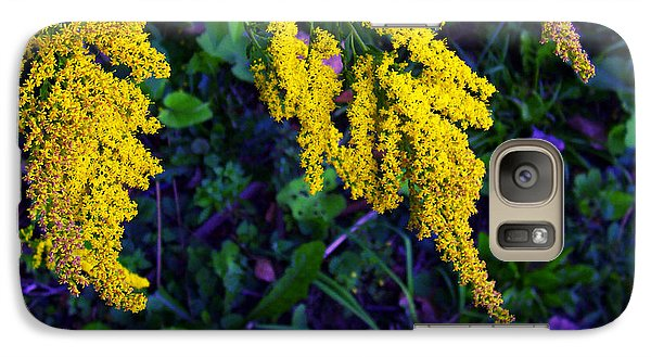 Galaxy Case featuring the photograph Goldenrod by Shawna Rowe