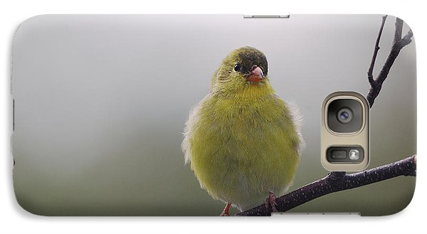 Galaxy Case featuring the photograph Goldfinch Puffball by Susan Capuano