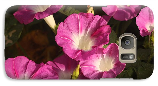 Galaxy Case featuring the photograph Good Morning, Glory by Sheila Brown