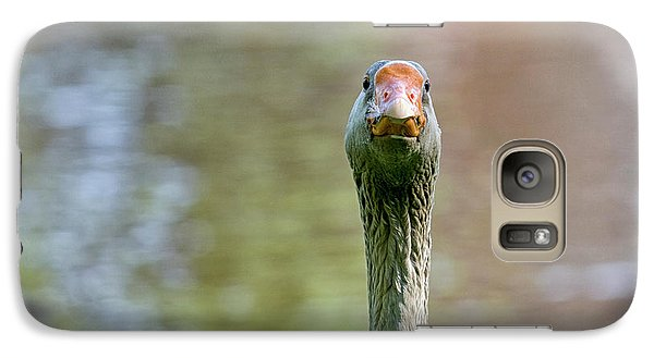 Galaxy Case featuring the photograph Goose Close-up by Patricia Hofmeester