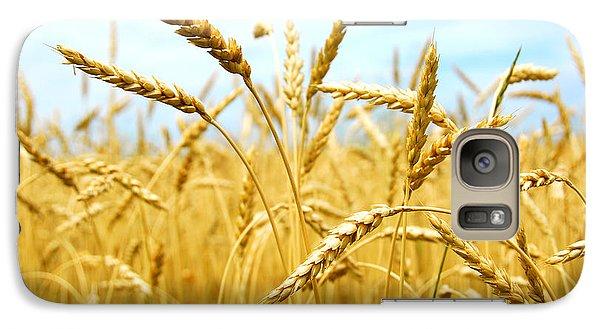 Grain Field Galaxy Case by Elena Elisseeva