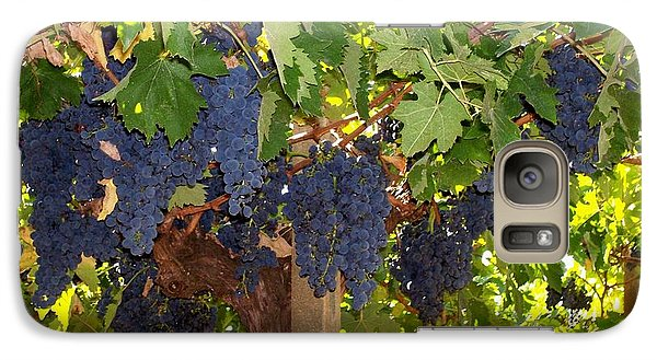Galaxy Case featuring the photograph Grapes Are Ready by Judy Kirouac