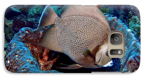 Galaxy Case featuring the photograph Gray Angel Fish And Sponge by Amy McDaniel