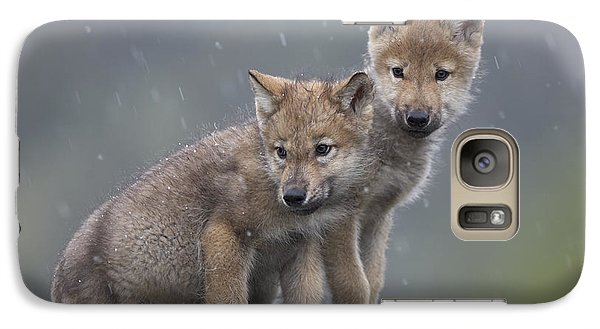 Gray Wolf Canis Lupus Pups In Light Galaxy S7 Case