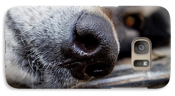 Galaxy Case featuring the photograph Gray Wolf Nose by Teri Virbickis