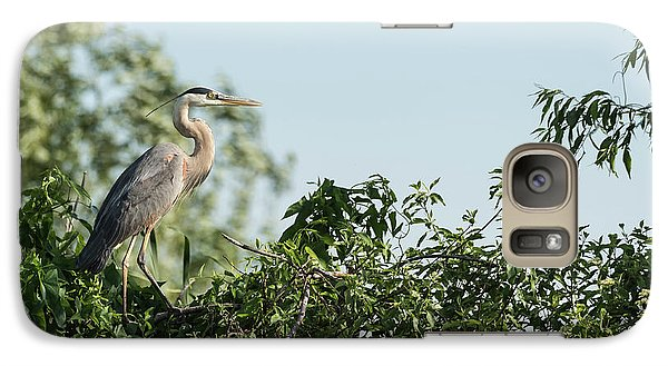 Galaxy Case featuring the photograph Great Blue Heron  2015-18 by Thomas Young