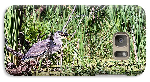 Galaxy Case featuring the photograph Great Blue Heron And Blue Gill by Edward Peterson