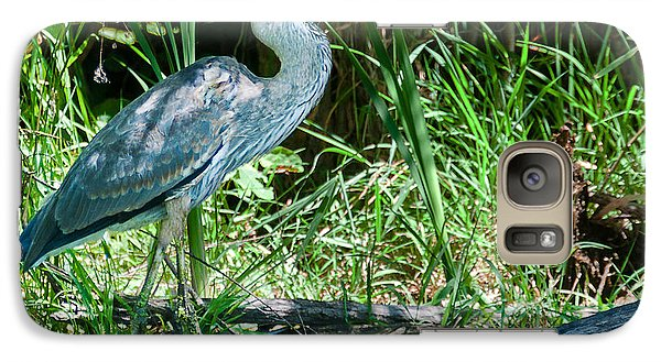 Galaxy Case featuring the photograph Great Blue Heron Fish Meal by Edward Peterson