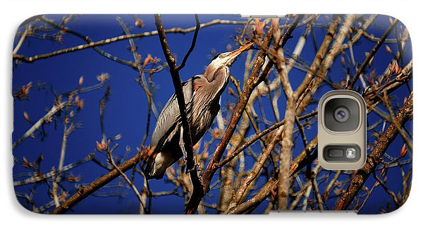 Galaxy Case featuring the photograph Great Blue Heron Nesting 2017 - 1 by Terry Elniski