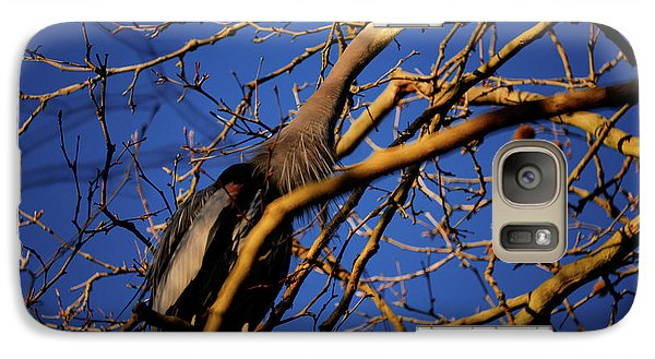 Galaxy Case featuring the photograph Great Blue Heron Nesting 2017 - 3 by Terry Elniski