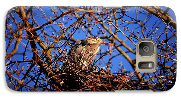 Galaxy Case featuring the photograph Great Blue Heron Nesting 2017 - 4 by Terry Elniski