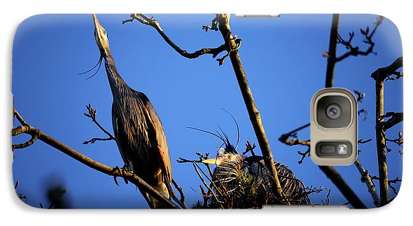 Galaxy Case featuring the photograph Great Blue Heron Nesting 2017 - 5 by Terry Elniski