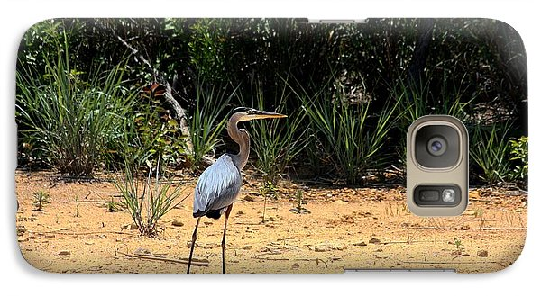Galaxy Case featuring the photograph Great Blue Heron On Beach by Sheila Brown