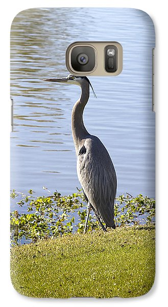 Galaxy Case featuring the photograph Great Blue Heron by Phyllis Denton
