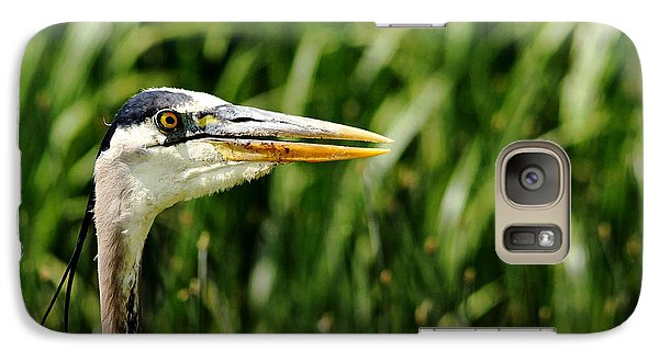 Galaxy Case featuring the photograph Great Blue Heron Portrait by Debbie Oppermann