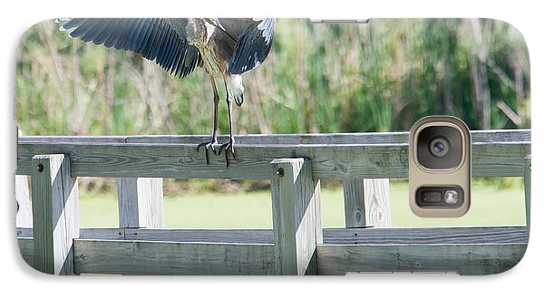 Galaxy Case featuring the photograph Great Blue Heron Preening by Edward Peterson