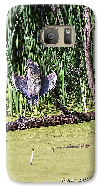 Galaxy Case featuring the photograph Great Blue Heron Sunning by Edward Peterson