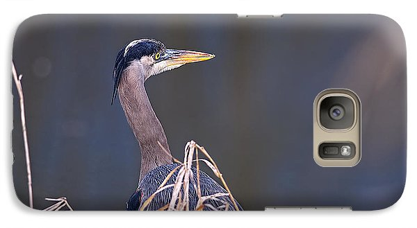 Galaxy Case featuring the photograph Great Blue Heron Waiting by Sharon Talson
