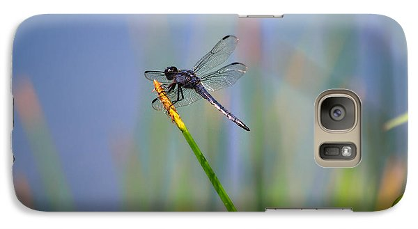 Galaxy Case featuring the photograph Great Blue Skimmer by Brenda Bostic
