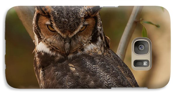 Galaxy Case featuring the photograph Great Horned Owl In A Tree 2 by Chris Flees
