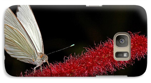 Galaxy Case featuring the photograph Great Southern White by Judy Vincent