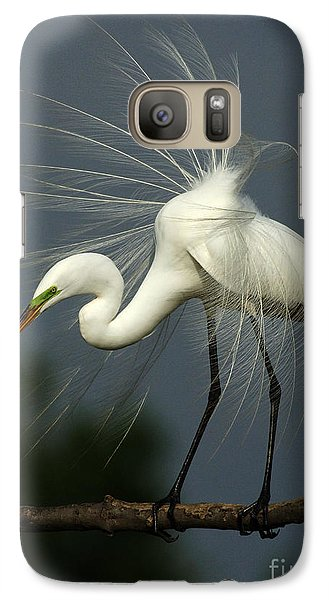Majestic Great White Egret High Island Texas Galaxy S7 Case by Bob Christopher