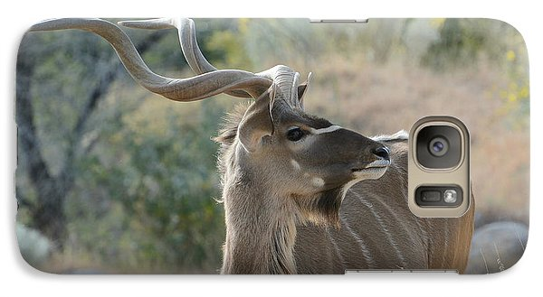 Galaxy Case featuring the photograph Greater Kudu 4 by Fraida Gutovich