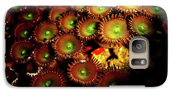 Galaxy Case featuring the photograph Green Button Polyps by Anthony Jones