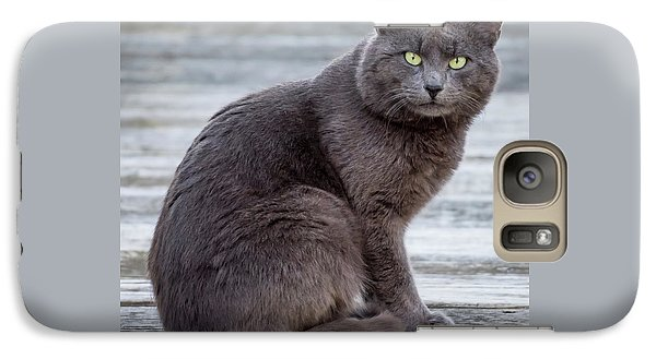 Galaxy Case featuring the photograph Green Eye Stare Cat Square by Terry DeLuco