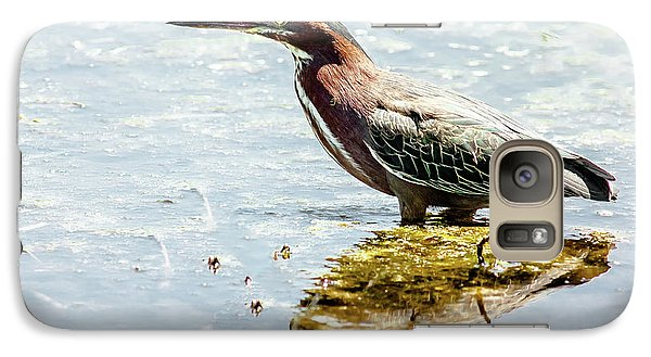 Galaxy Case featuring the photograph Green Heron Bright Day by Robert Frederick