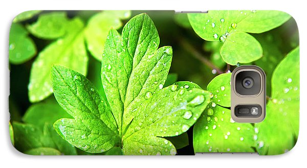 Galaxy Case featuring the photograph Green Leaves by Christina Rollo