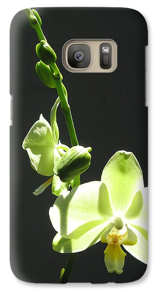 Galaxy Case featuring the photograph Green Orchids by Alfred Ng