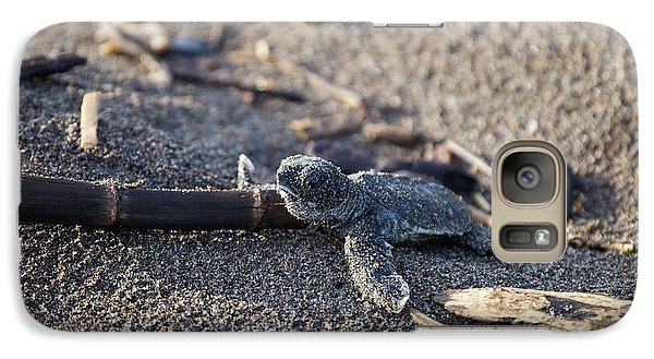Galaxy Case featuring the photograph Green Sea Turtle Hatchling by Breck Bartholomew