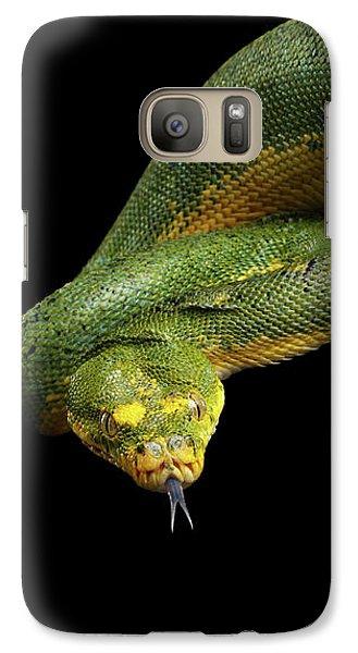 Green Tree Python. Morelia Viridis. Isolated Black Background Galaxy S7 Case by Sergey Taran
