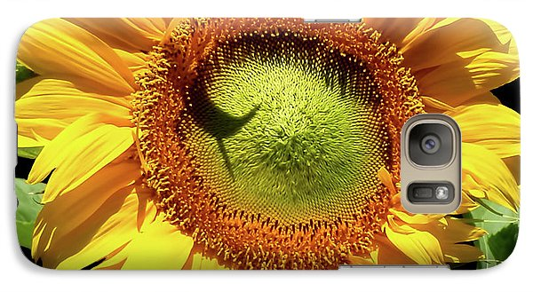 Galaxy Case featuring the photograph Greenburst Sunflower by Rona Black