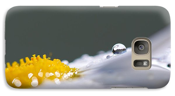 Grey And Yellow Daisy Galaxy Case by Lisa Knechtel