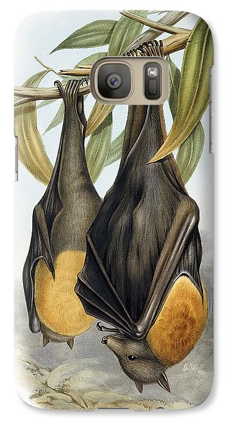 Grey Headed Flying Fox, Pteropus Poliocephalus Galaxy S7 Case by John Gould