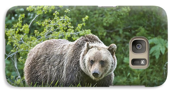 Grizzly Bear Galaxy S7 Case by Gary Lengyel