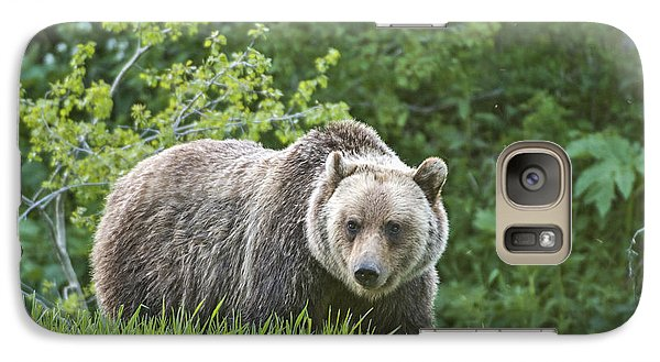 Galaxy Case featuring the photograph Grizzly Bear by Gary Lengyel