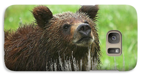 Galaxy Case featuring the photograph Grizzly Cub by Steve Stuller