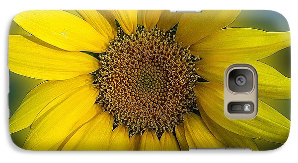 Galaxy Case featuring the photograph Groovy Sunflower by Jeanne Forsythe