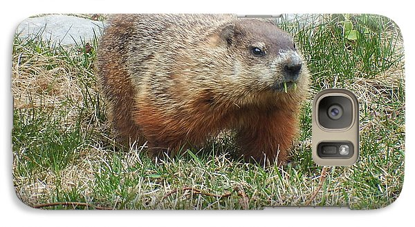 Galaxy Case featuring the photograph Groundhog by Vicky Tarcau