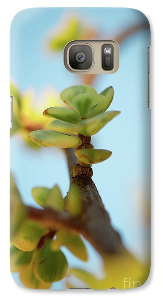 Galaxy S7 Case featuring the photograph Growth by Ana V Ramirez