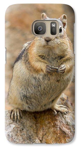 Grumpy Squirrel Galaxy S7 Case