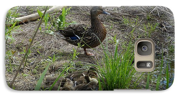 Galaxy Case featuring the photograph Guarding The Ducklings by Donald C Morgan