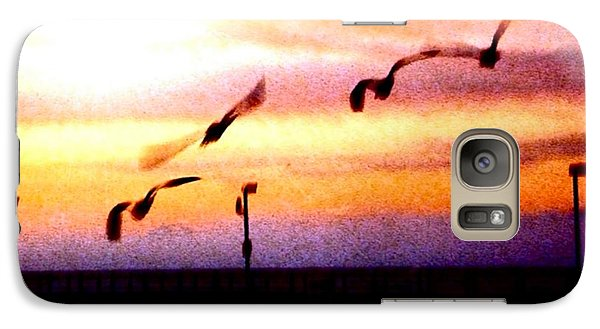 Galaxy Case featuring the photograph Gull Play by Sadie Reneau